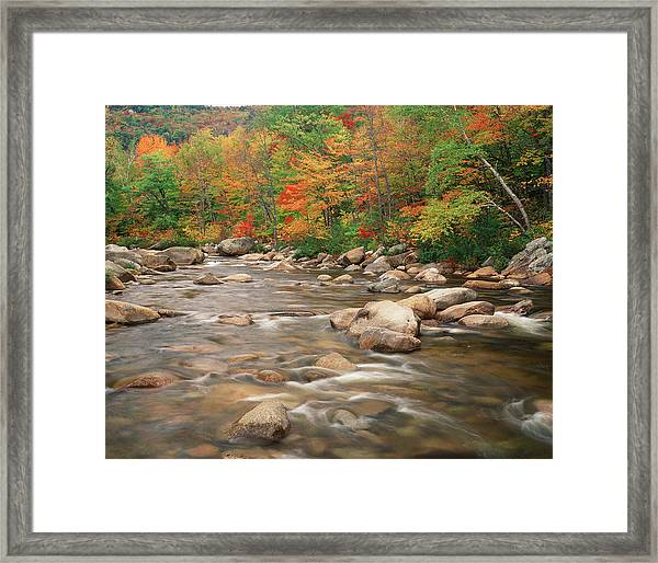 Swift River In Autumn, White Mountains Framed Print