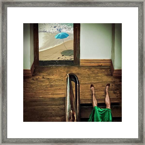 Swim Or Dive! Framed Print by Ambra
