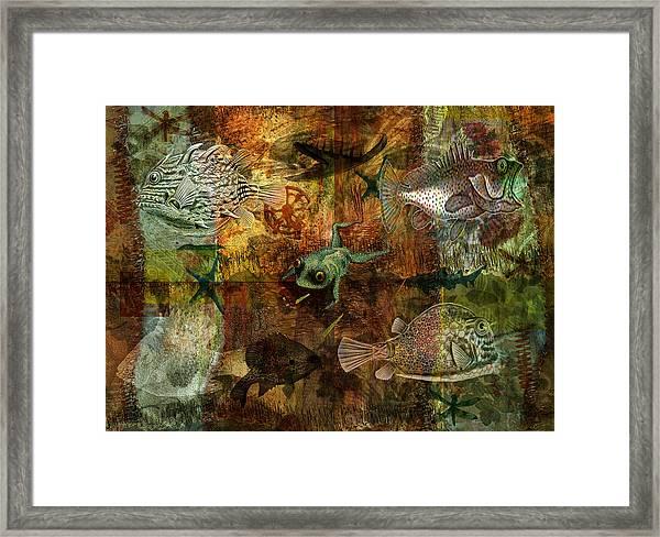 Swimming Against The Tide Framed Print