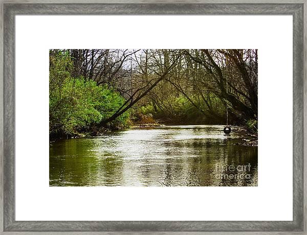 Swimming Hole 2 Framed Print