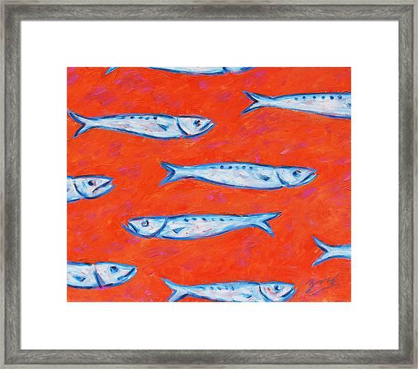 Swimming Upstream Framed Print