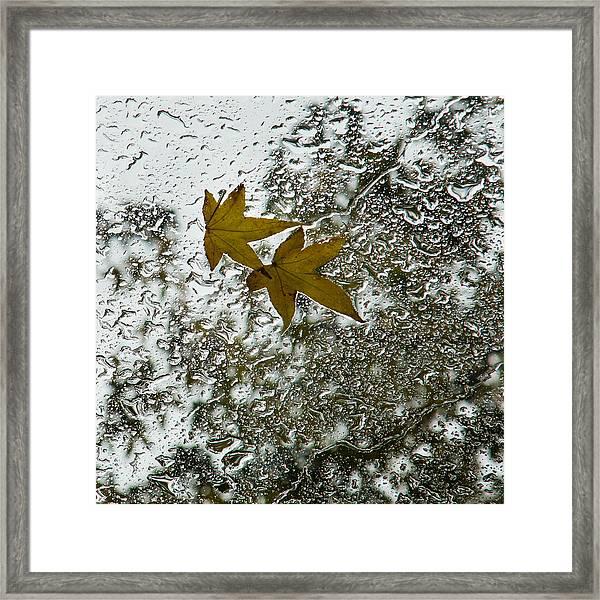 Symbols Of Autumn  Framed Print