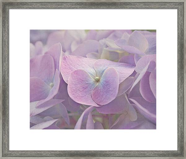 Symphony In Purple Framed Print