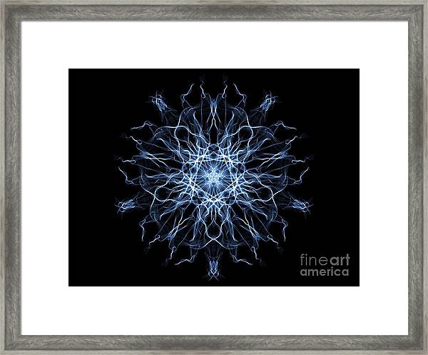 Synchronised Swimmers Framed Print