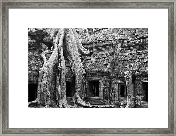 Ta Prohm Roots And Stone 01 Framed Print