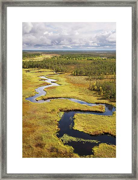 Taiga. Western Siberia Framed Print