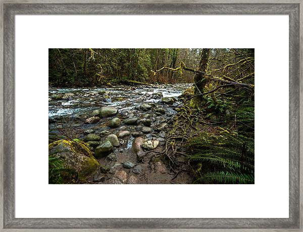 Take A Moment Framed Print