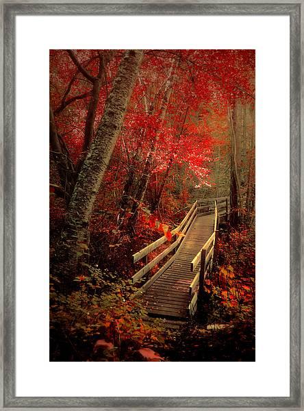 Take Shelter Framed Print