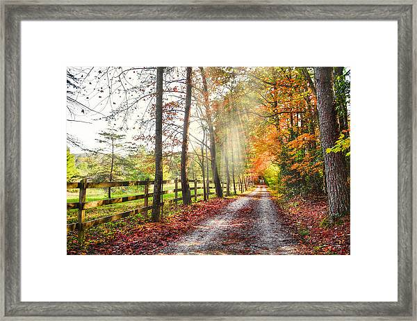 Take The Back Roads Framed Print