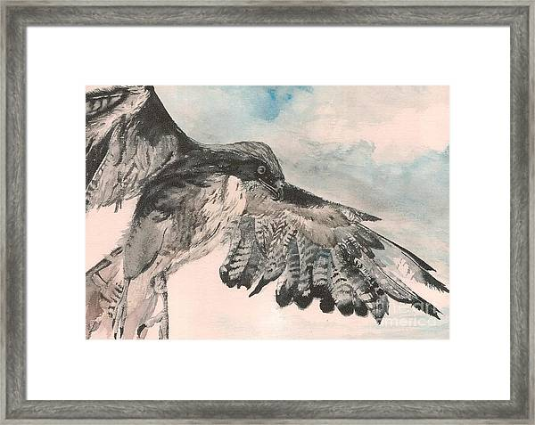Take Wing Framed Print