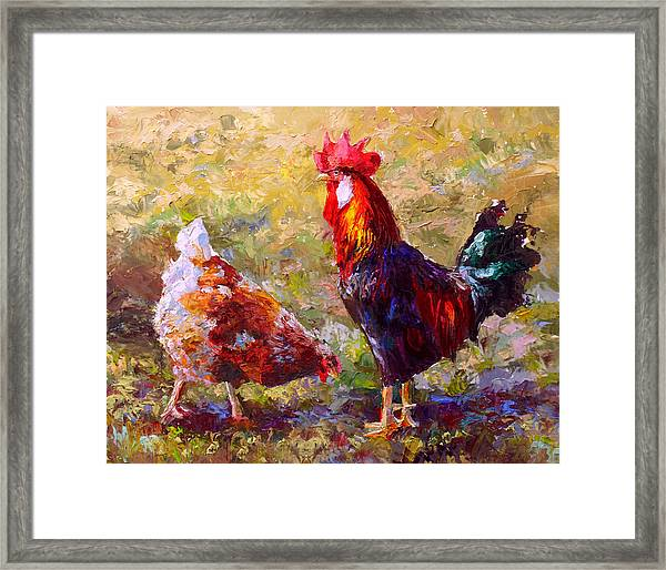 Rooster And Hen Farm Art Chicken Painting  Framed Print