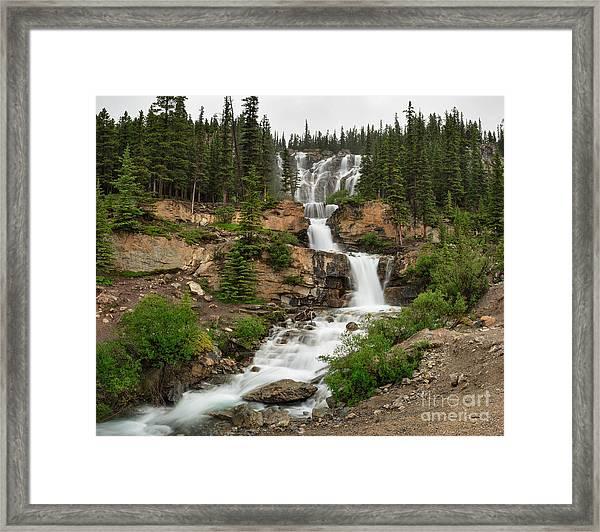 Tangle Falls Framed Print