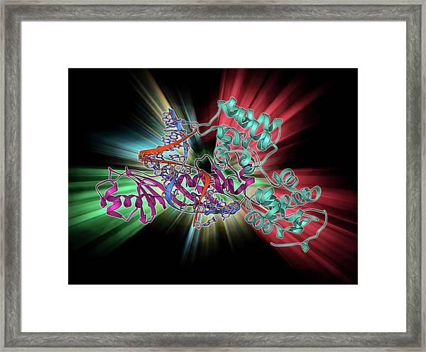 Tata Box-binding Protein Complex Framed Print