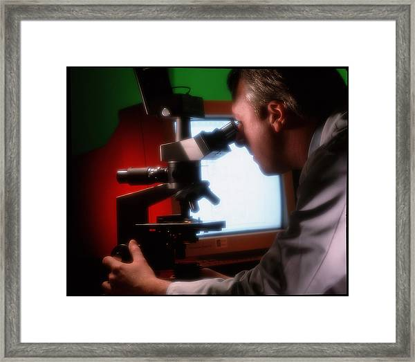 Technician Examines A Slide Under A Microscope Framed Print
