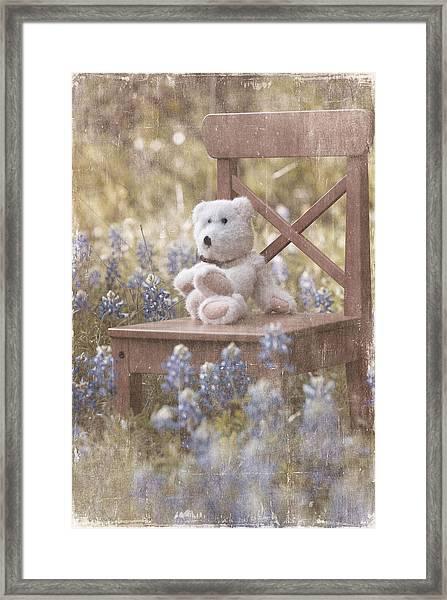 Teddy Bear And Texas Bluebonnets Framed Print