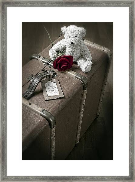 Teddy Wants To Travel Framed Print