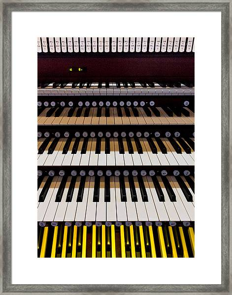 Teeth Of An Instrument Framed Print