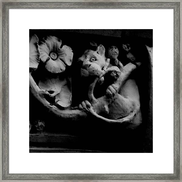 Terra Cotta Framed Print