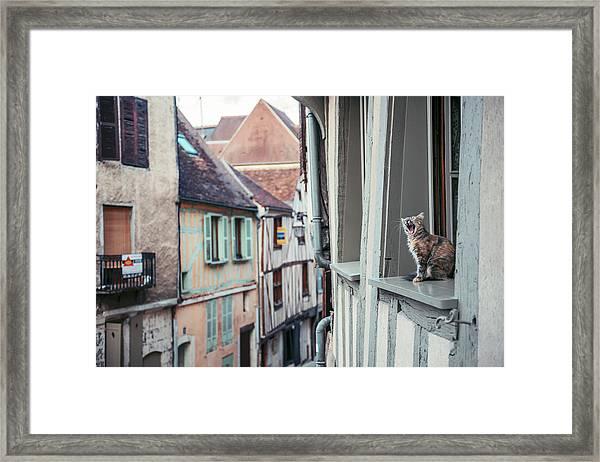 Territory Framed Print
