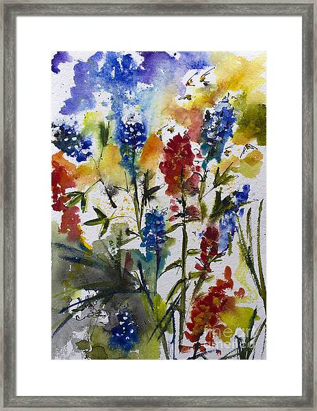 Texas Blue Bonnets And Indian Paintbrush Watercolor Framed Print