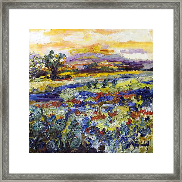 Texas Hill Country Bluebonnets And Indian Paintbrush Sunset Landscape Framed Print