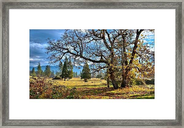 Thanksgiving Blessings Framed Print