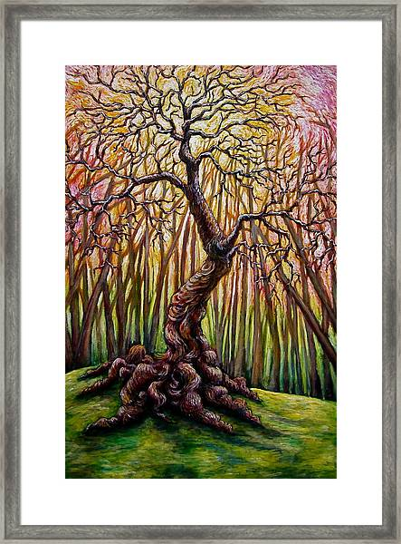 That Old Tree Framed Print