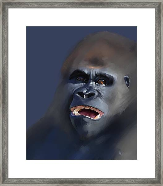 That's Pretty Funny Actually Framed Print