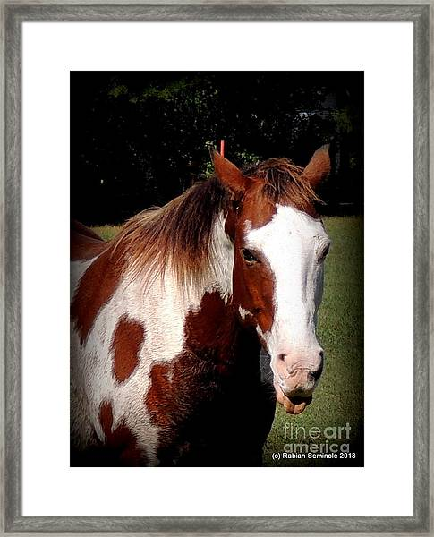 Thats What I Think Framed Print