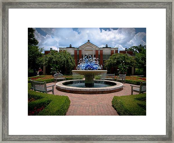 The Arboretum Framed Print by Ron Plasencia