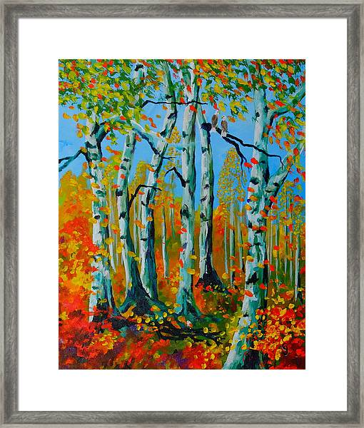 The Aspens Framed Print