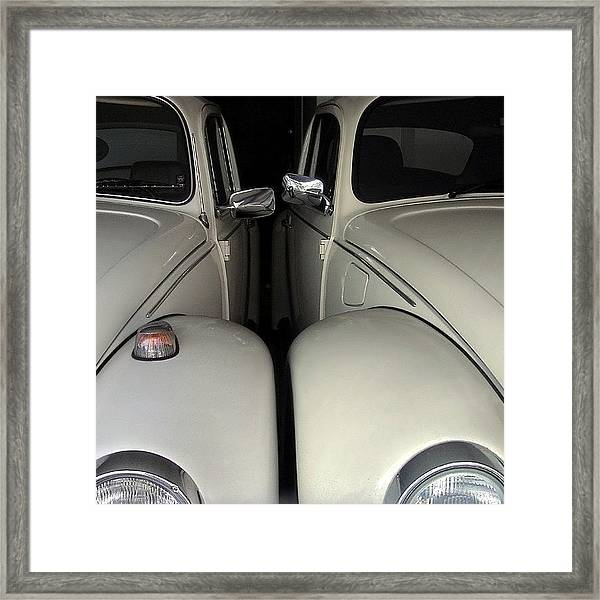The Authentic Love Bugs Framed Print
