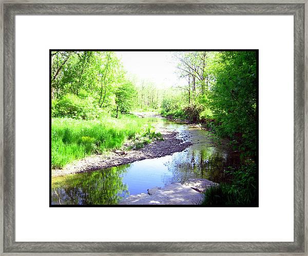 The Babbling Stream Framed Print