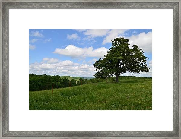The Back Field Framed Print