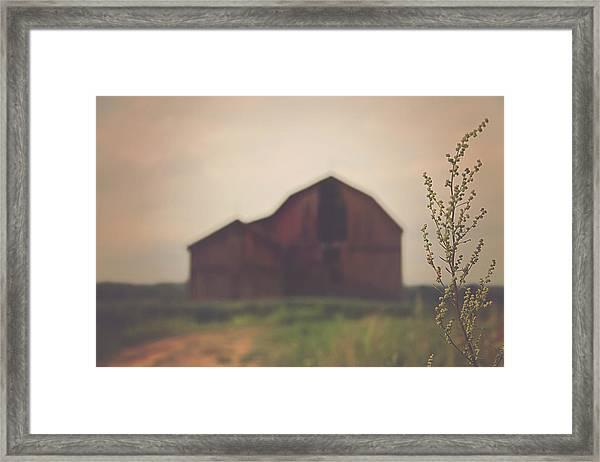 The Barn Daylight Version Framed Print