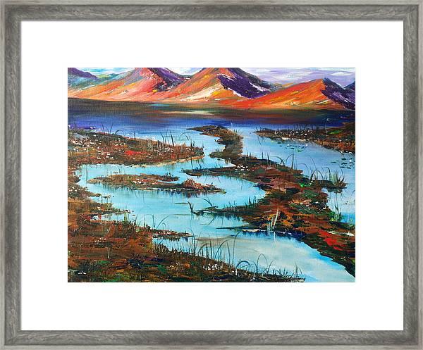 The Bog Framed Print