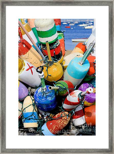 The Bouys Are Back In Town Framed Print
