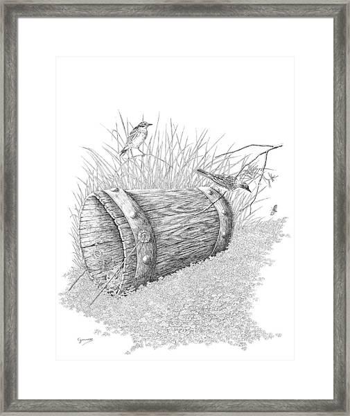 The Bucket Framed Print