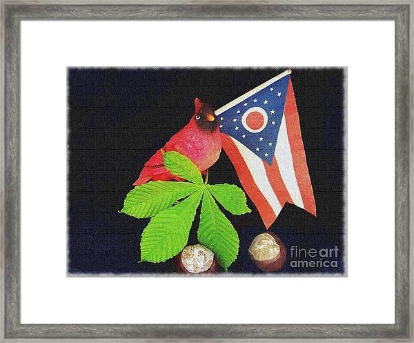 The Buckeye State Framed Print
