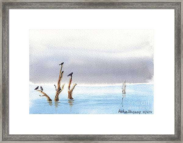 The Calm Framed Print