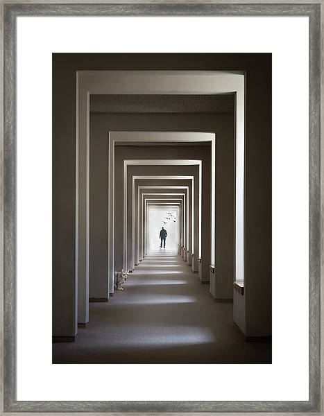 The Cat Who Walks Through Walls Framed Print