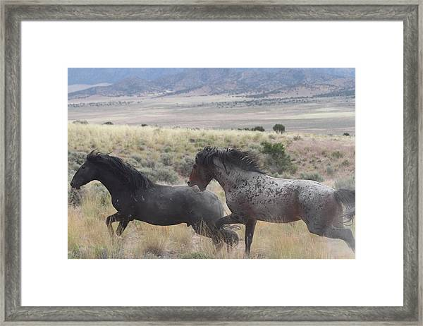 The Chase Framed Print by Gene Praag