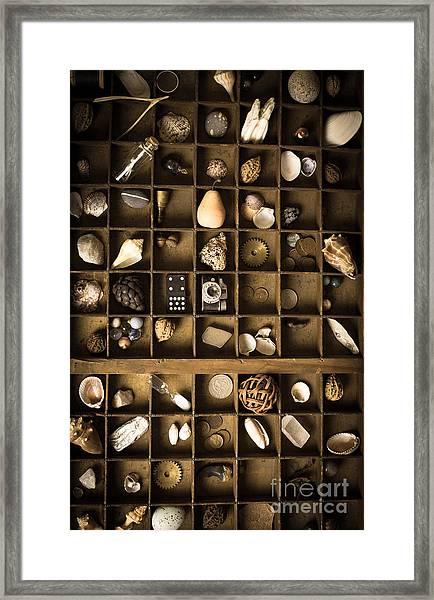 The Collection Framed Print