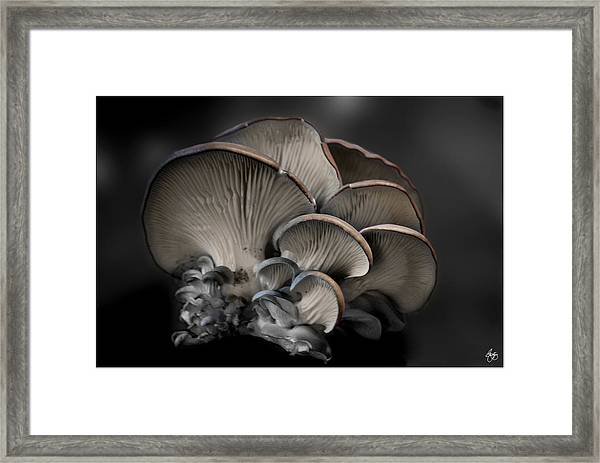 Painted Fungus Framed Print