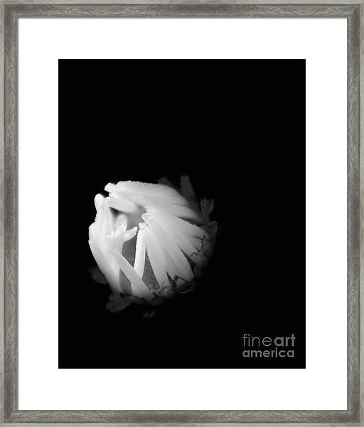 The Coming Light Framed Print