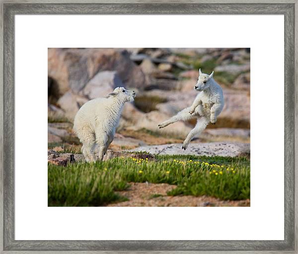 The Dance Of Joy Framed Print