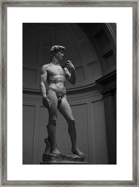 The David Framed Print
