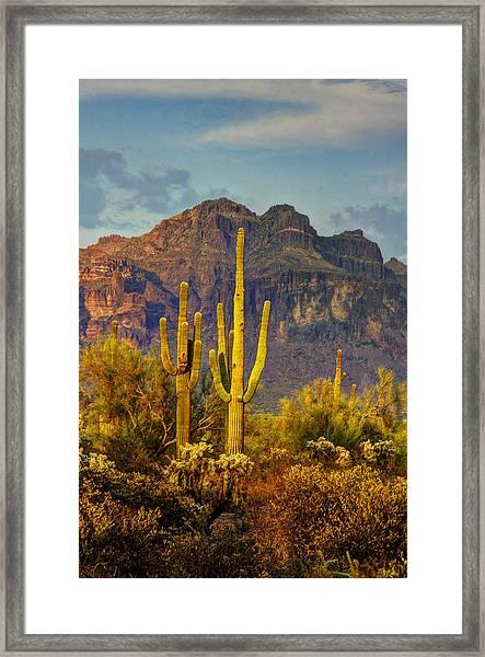 The Desert Golden Hour II  Framed Print