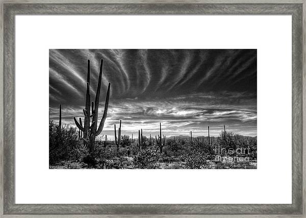 The Desert In Black And White Framed Print