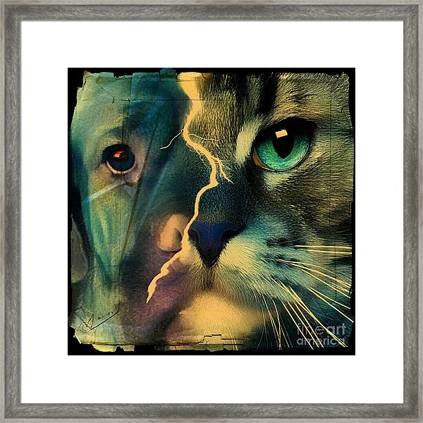The Dog Connection -green Framed Print